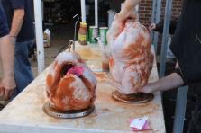 turkey 102