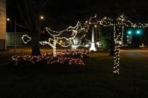 lights 016