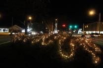 lights 037