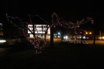 lights 038