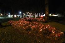 lights 047