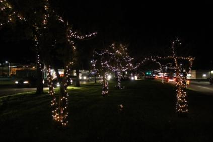 lights 051