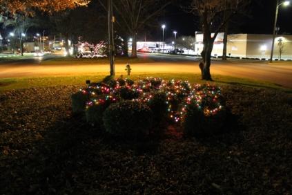 lights 058