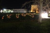 lights 061