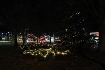 lights 067