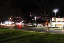 lights 072