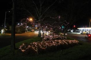 lights 077
