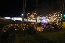 lights 084