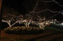 lights 097