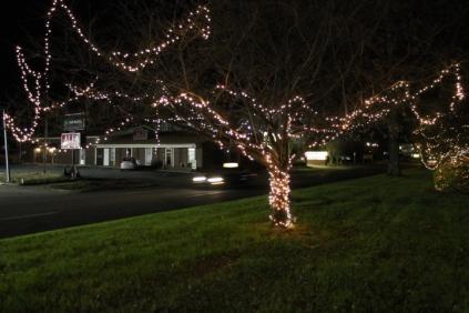 lights 107