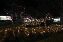lights 110