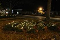lights 137