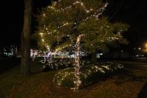 lights 138