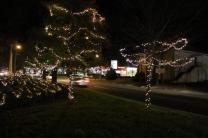 lights 142