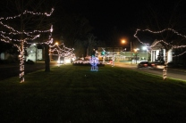 lights 146