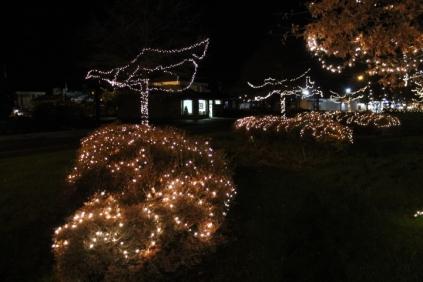 lights 154