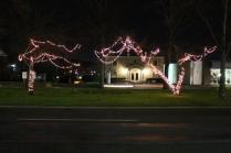 lights 165