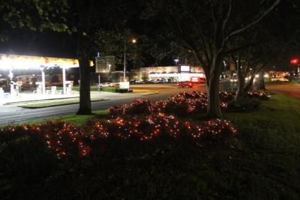 lights 174