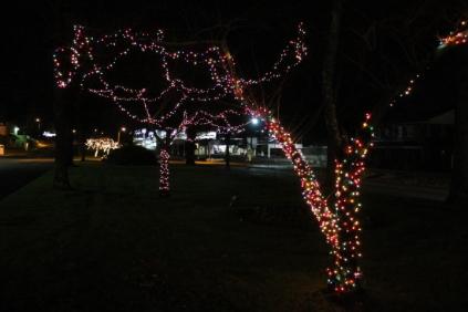 lights 179