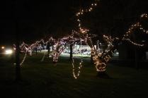 lights 189