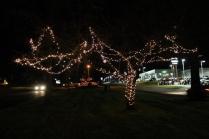 lights 191