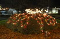 lights 193