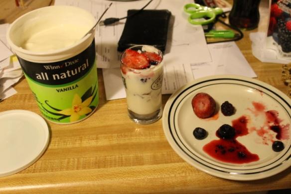 yogurt 010