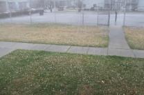 weather 010
