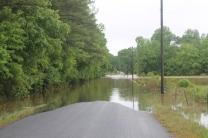 flood 003