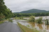 flood 019