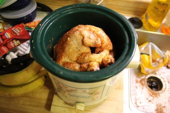 chicken 011