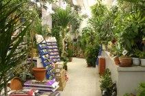 Store_0013