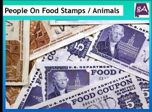 Florida Food Stamps Irma Pre Registration