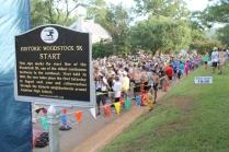 woodstock 011
