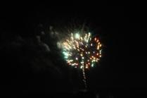 Freedom Festival Fireworks 16 (15)