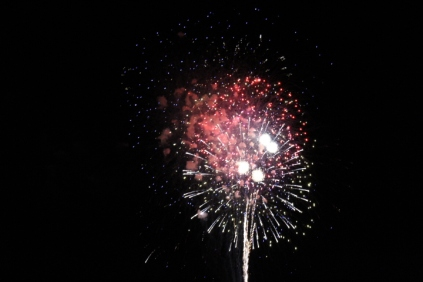 Freedom Festival Fireworks 16 (20)
