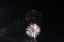 Freedom Festival Fireworks 16 (28)
