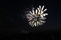Freedom Festival Fireworks 16 (7)