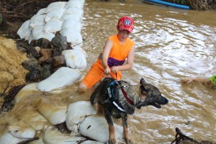 US Canine Biathlon (20)