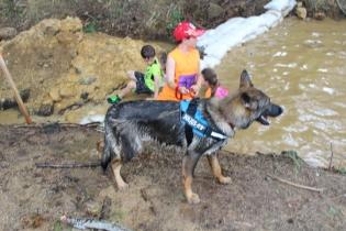 US Canine Biathlon (22)