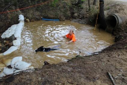 US Canine Biathlon (23)