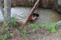 US Canine Biathlon (69)