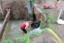 US Canine Biathlon (70)