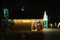 Christmas At The Falls '17 (105)