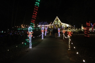Christmas At The Falls '17 (109)