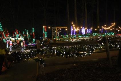 Christmas At The Falls '17 (111)