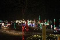 Christmas At The Falls '17 (113)