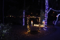Christmas At The Falls '17 (17)