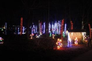 Christmas At The Falls '17 (44)