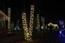 Christmas At The Falls '17 (5)